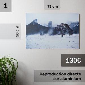 photo Reproductions à vendre pour Noël Rafael Coutinho